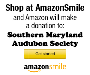"The mission of the Southern Maryland Audubon Society is ""to promote appreciation, conservation, and protection of birds, other wildlife, and their nat..."