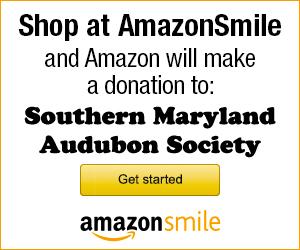 SMAS Amazon Smile